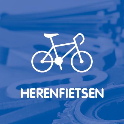 HERENFIETSEN